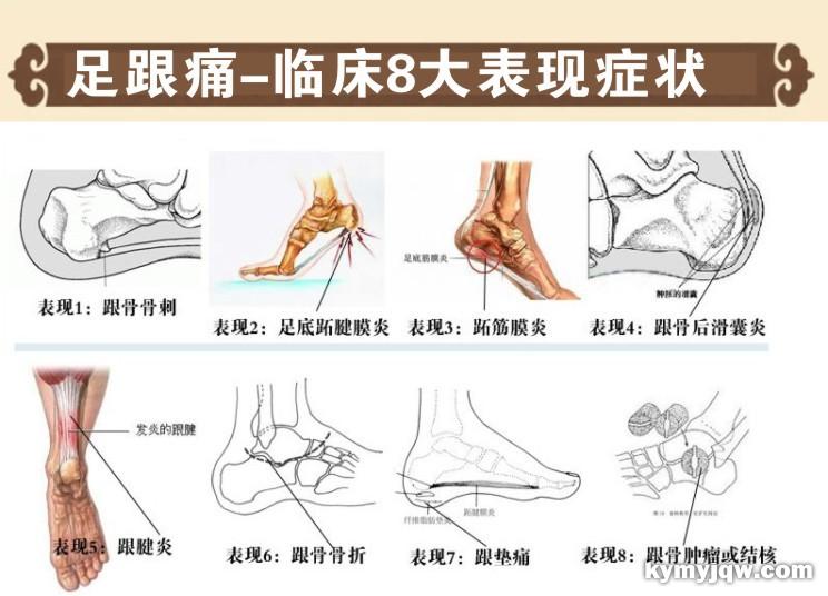 耳穴疗法治疗肩疼、双腿过敏、脚踝疼、崩漏