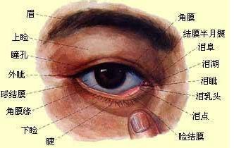 柔性整骨治疗失眠便秘、眼睛痒胀、颈椎疼痛、椎管狭窄、脚肿